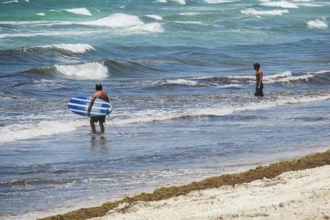 Las autoridades exhortan a la población a colaborar para mantener la limpieza de las playas. Foto: Cuartoscuro