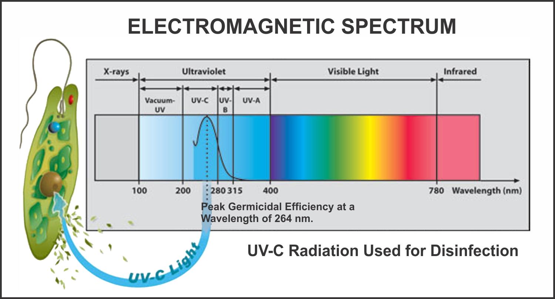 electromagnetic spectrum diagram labeled fahrenheit 451 plot lexus wheel hub free engine image for user