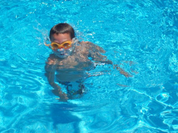 Above Ground Pool Cost