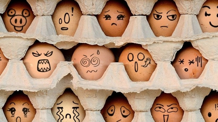 egg-employees.jpeg