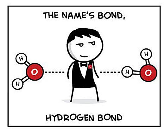 What Is The Chemical Bond?