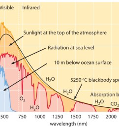 the following graph shows the absolute irradiance spectra of sunlight in space at sea level and inside a body of water source wikipedia  [ 1693 x 1098 Pixel ]