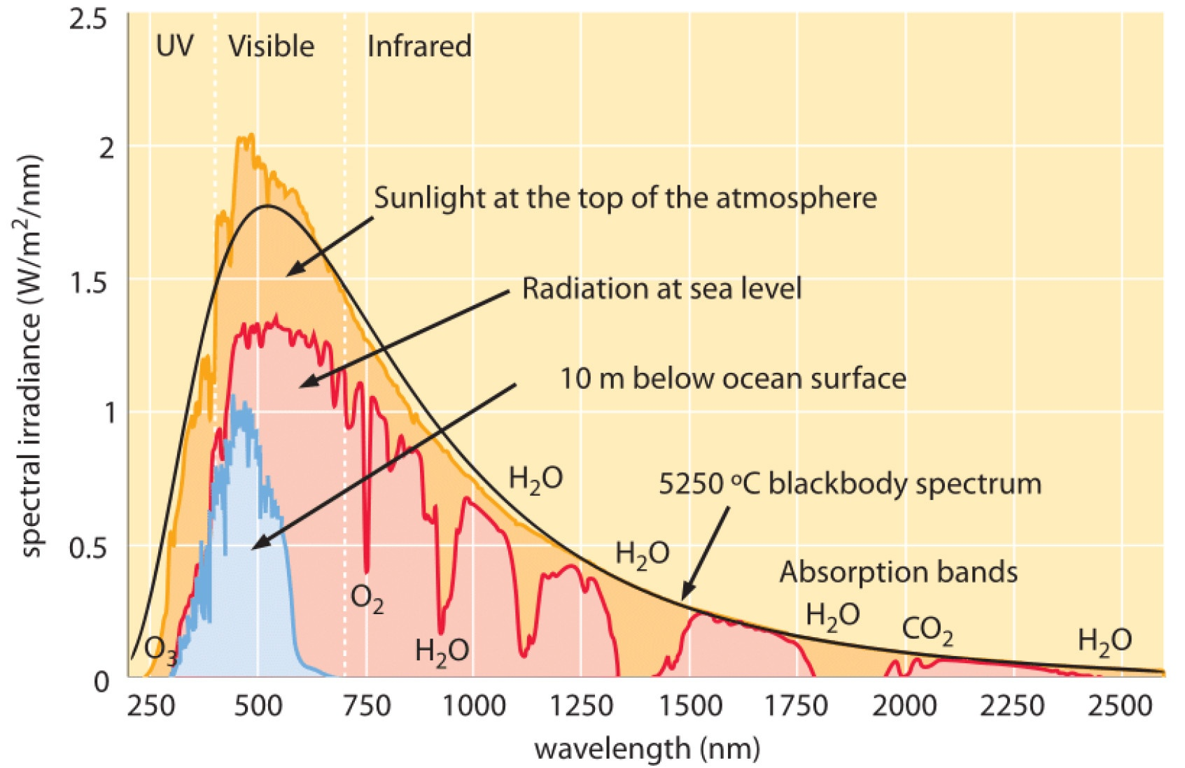 hight resolution of the following graph shows the absolute irradiance spectra of sunlight in space at sea level and inside a body of water source wikipedia