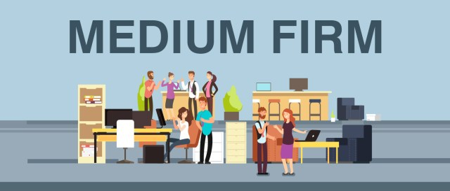 CA Articleship from a medium firm