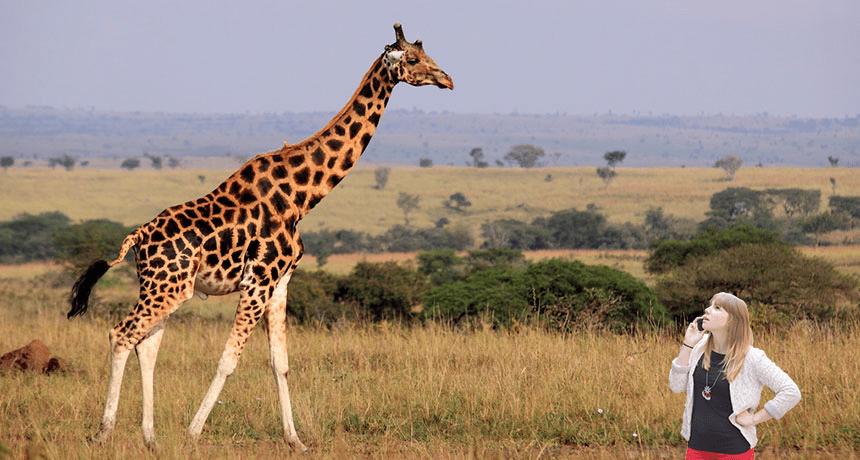 britt-with-giraffe.png