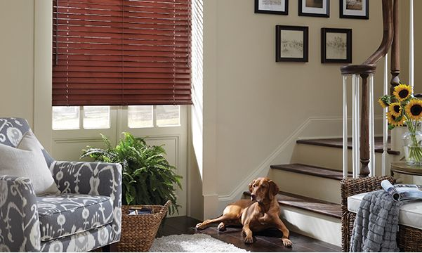 window blinds for living room center rugs in nigeria best treatments wood the
