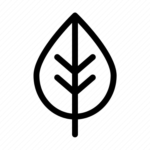 Cosmetic, leaf, natural, organic, symbols, vegan icon
