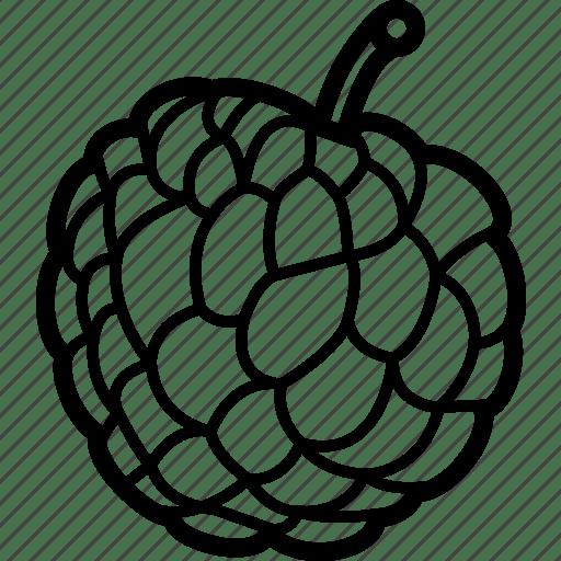 Apple, custard, custardapple, food, fruit, fruits icon