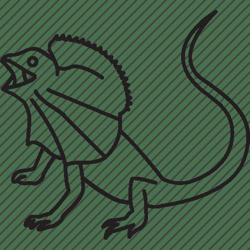Animal, australia, australian, frill, frill-necked, frill