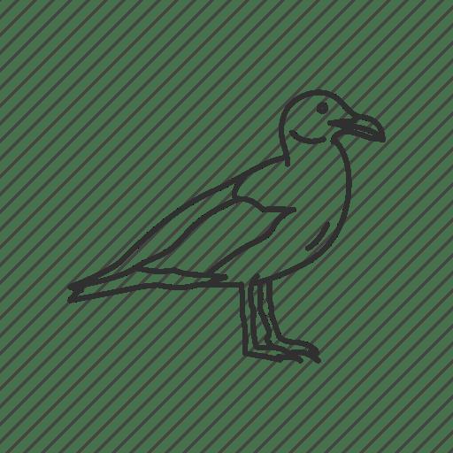 California Seagull Usa Utah State Symbol State State Birds Birds Icon