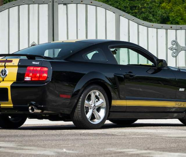 2006 Ford Shelby Gt H 3
