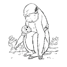 baby monkey coloring pages # 12