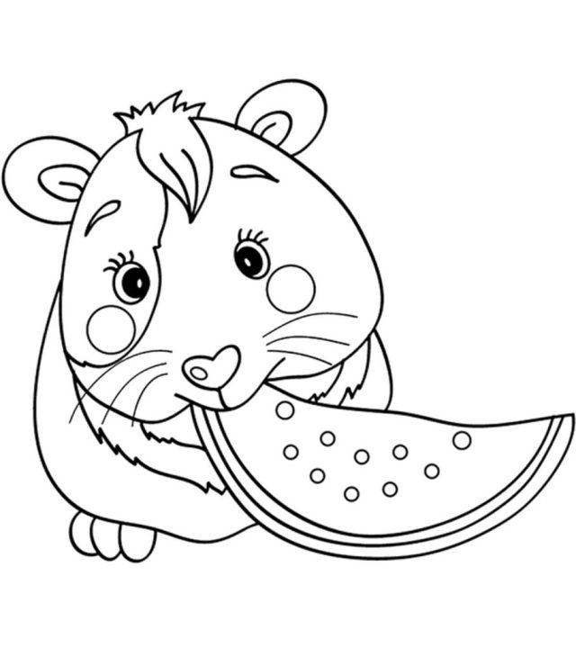 Top 28 Free Printable Guinea Pig Coloring Pages Online