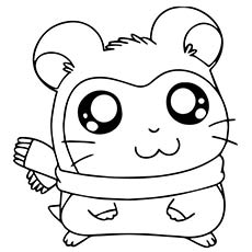 guinea pig coloring page # 17