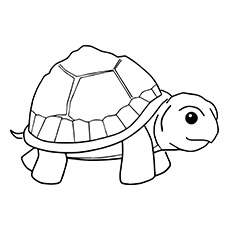 coloring pages turtle # 3