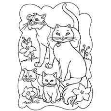 cat color page # 10