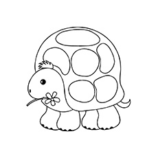 coloring pages turtle # 88