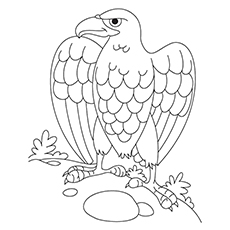 20 Cute Eagle Coloring Pages For Your Little Ones