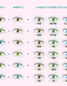 Baby eye color chart also calculator and predictor momjunction rh