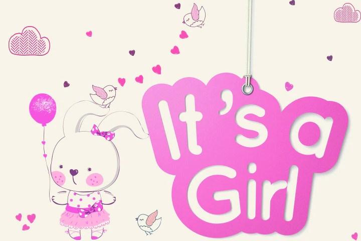 baby girl banners teriz