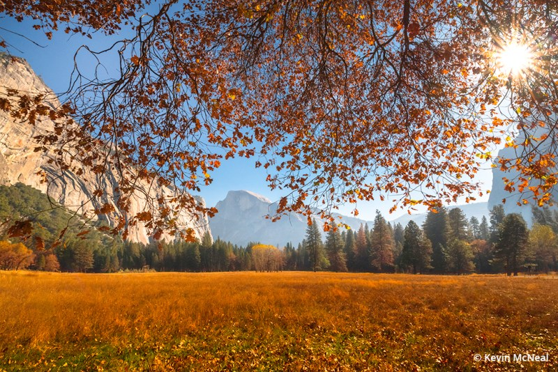 Fall photography in Yosemite National Park