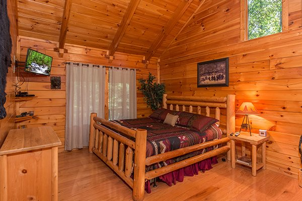Animal Kingdom  A Gatlinburg Cabin Rental