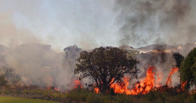 Inhalar humo causa asfixia y quemaduras  Salud180