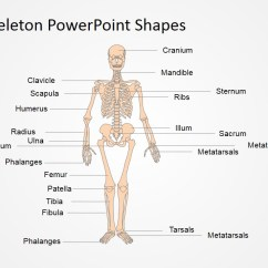 Names Of Bones In Human Skeleton Diagram 1998 Jeep Cherokee Pcm Wiring Powerpoint Shapes Slidemodel Anatomy Presentation Template And Physiology Body Systems Pictures