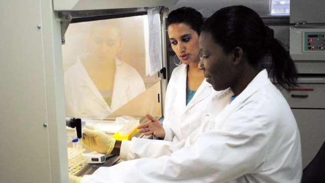 Dr. Raabya Rossenkhan working with a colleague in the BHP Lab