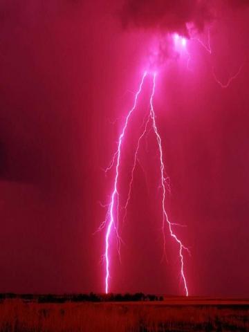 Ed Hardy Iphone Wallpaper Pink Lightning Wallpaper Iphone Blackberry