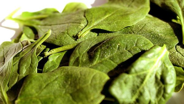 e coli spinach