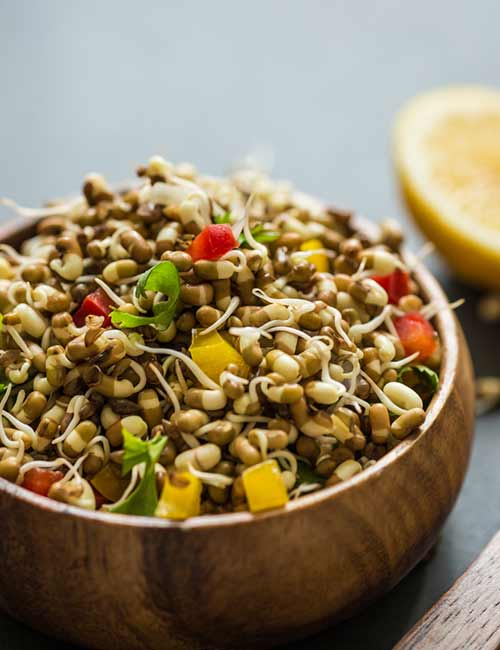 Vegan Sprout Salad