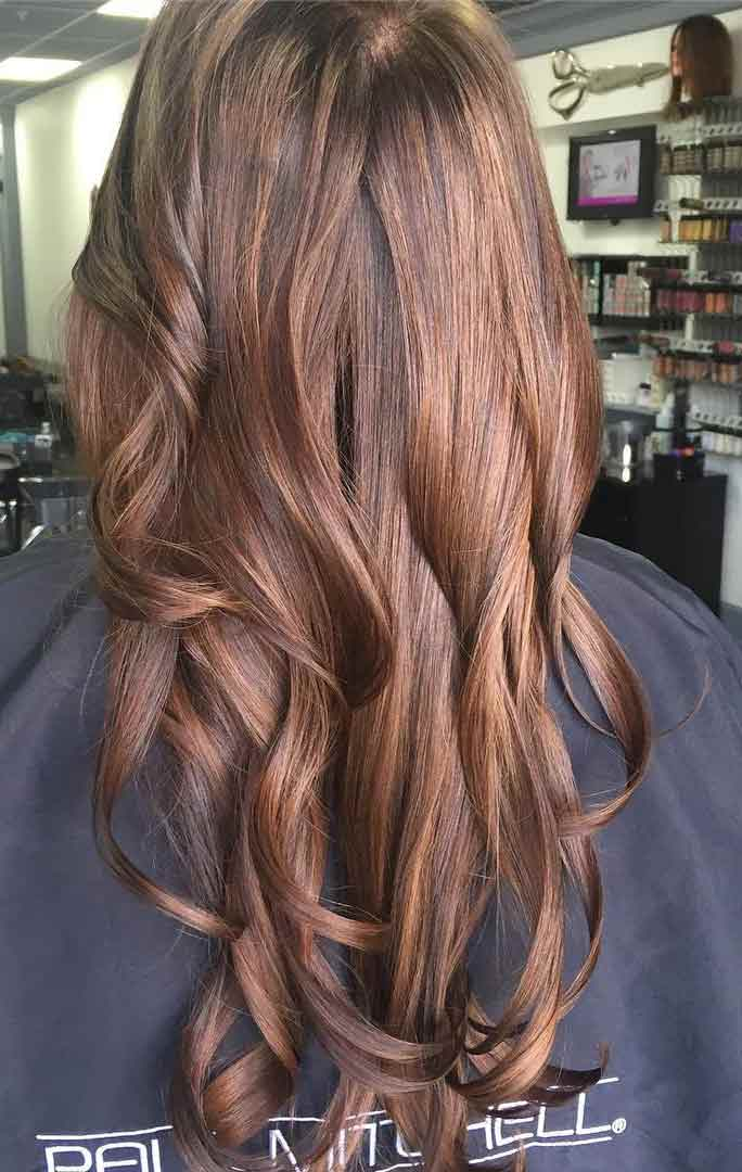 Chestnut Hair Color With Blonde Highlights Hairwajidi