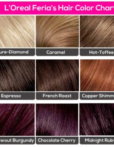 oreal feria  hair color chart also amazing colour charts from your most trusted brands rh stylecraze