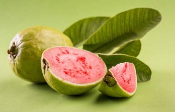 16. Guava