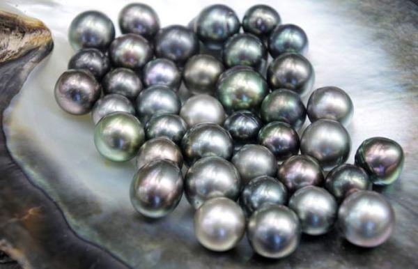 7.-Pearl