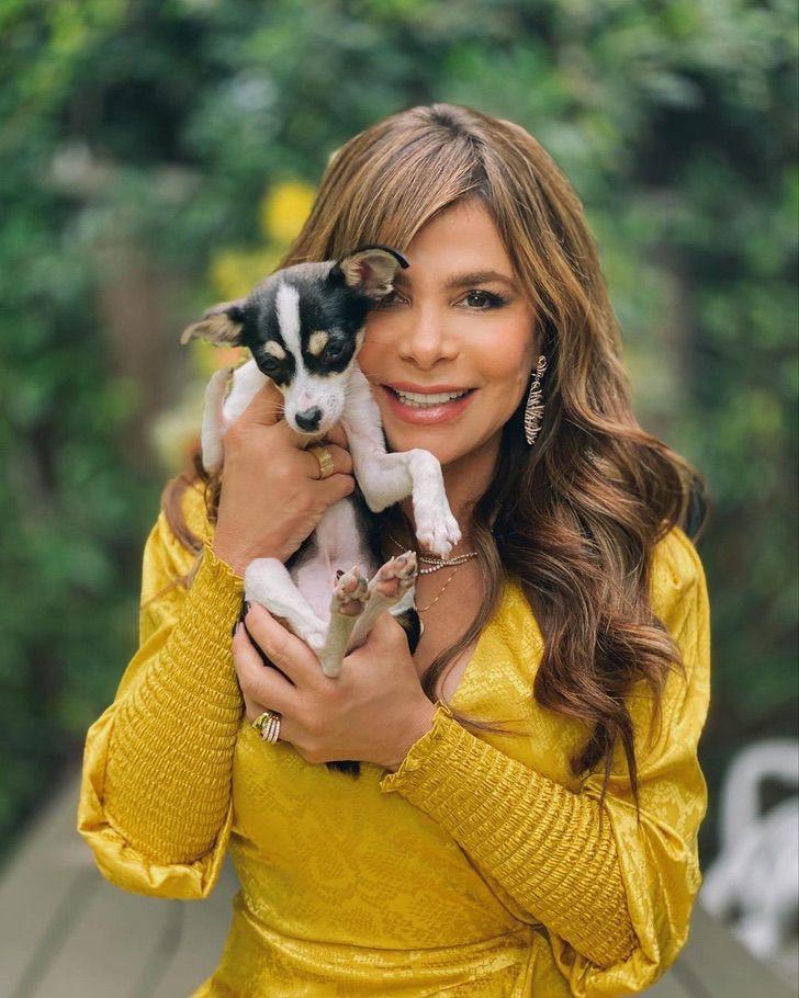 11 28 - 11 famosos que fueron víctimas de sus fans. Sandra Bullock se escondió de ellos en un armario