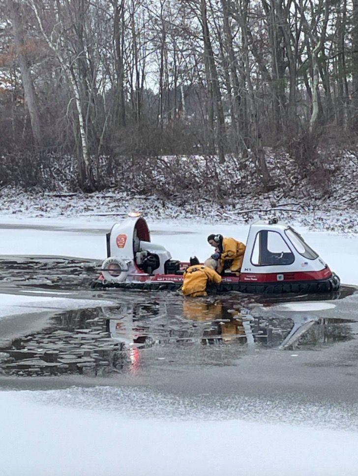 Captura de Pantalla 2021 01 27 a las 17.12.50 - Bomberos rescatan a perro que estaba inmóvil congelándose en un lago. Ya se había dado por vencido