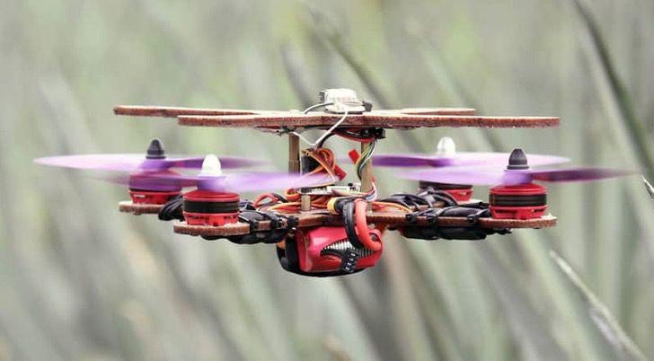 malasia dron tecnologia reciclaje pina fruta ciencia0002 - En Malasia los científicos utilizan hojas de piña para hacer drones. Ciencia y naturaleza unidas