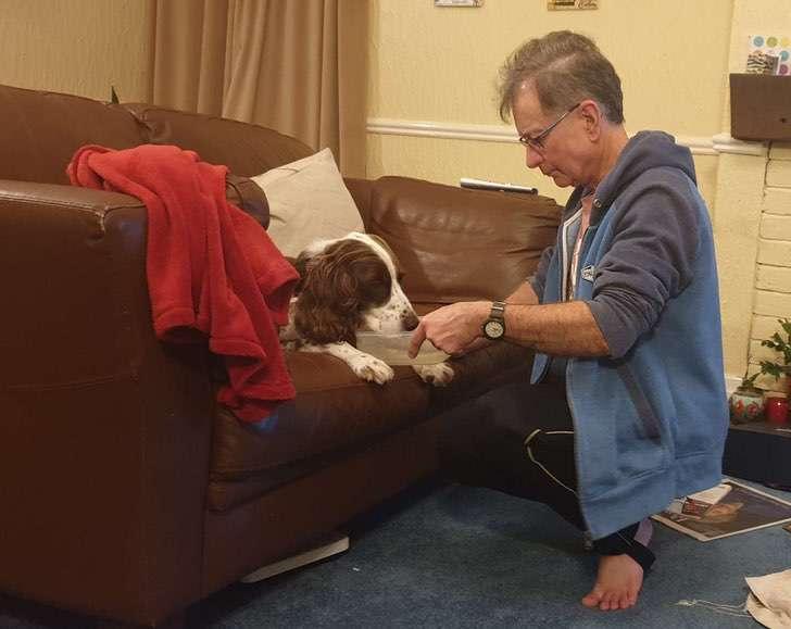 scale 2021 01 05T150403.525 - Amo duerme en el sofá para acompañar a su perro anciano. Es tan viejito que ya no sube las escaleras
