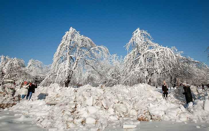 cataratas del niagara estados unidos006 - El frío sigue castigando sin piedad a Estados Unidos. Ahora se congelaron las cataratas del Niágara
