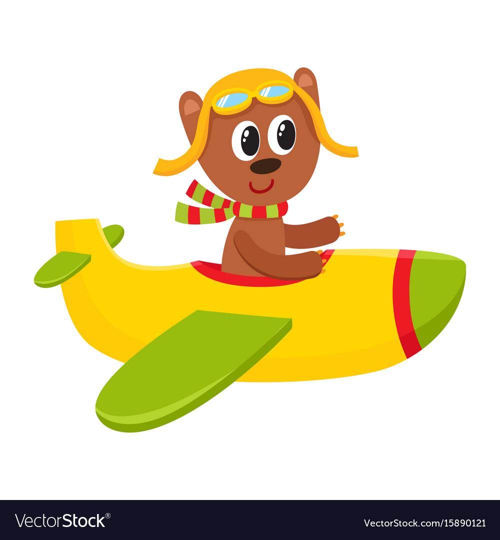 cute teddy bear pilot