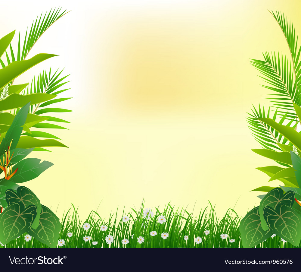 Background of lush tropical jungle at pacific coast of mexico. Beautiful Tropical Forest Background Royalty Free Vector