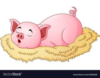 pig sleeping cartoon cute vector royalty