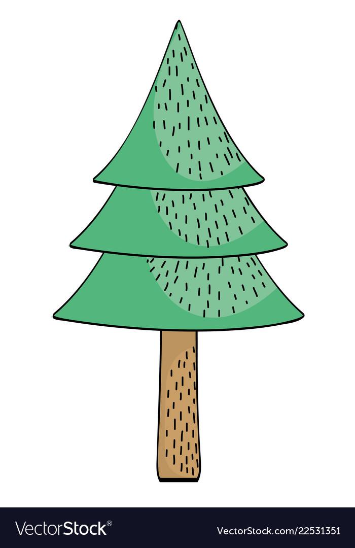 tree pine drawing cartoon