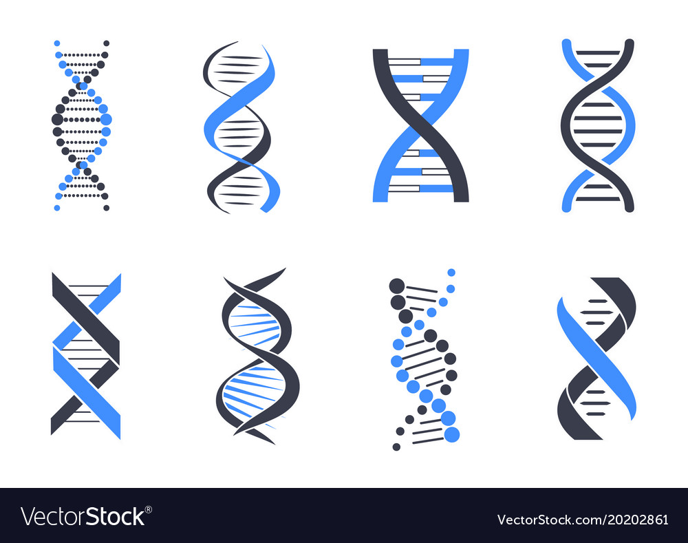 dna helix patterns colorful