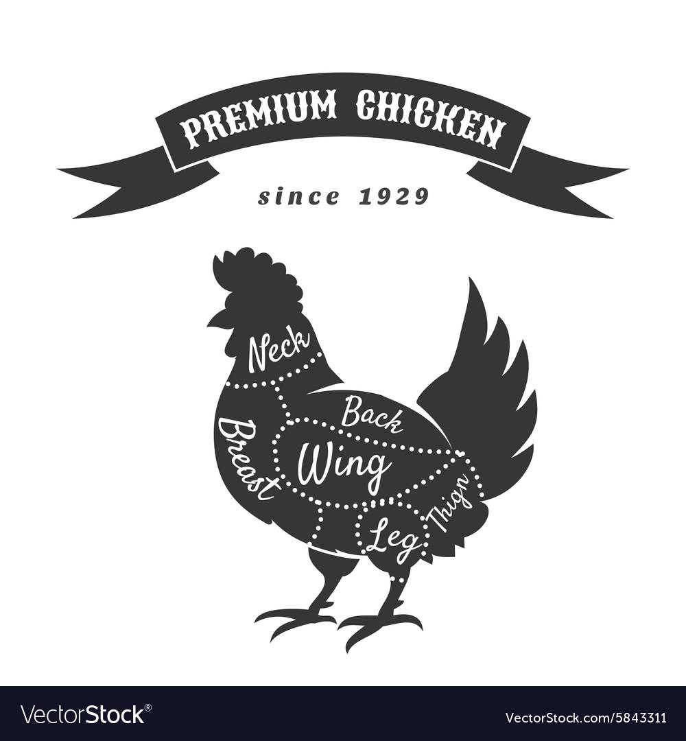 medium resolution of chicken meat cuts diagram vector image