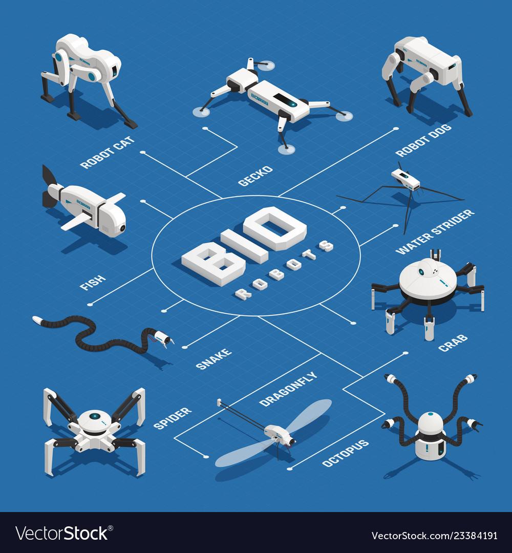 hight resolution of bio robots isometric flowchart vector image