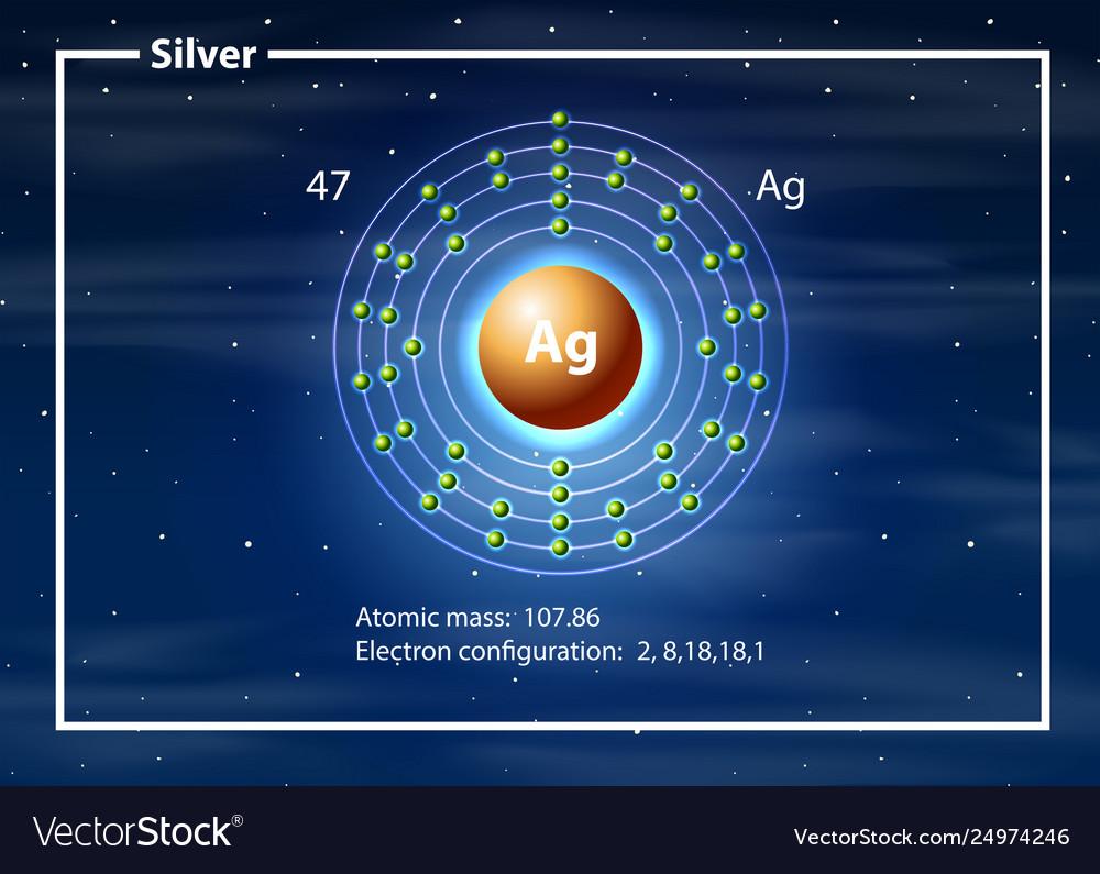 hight resolution of silver atom diagram concept vector image