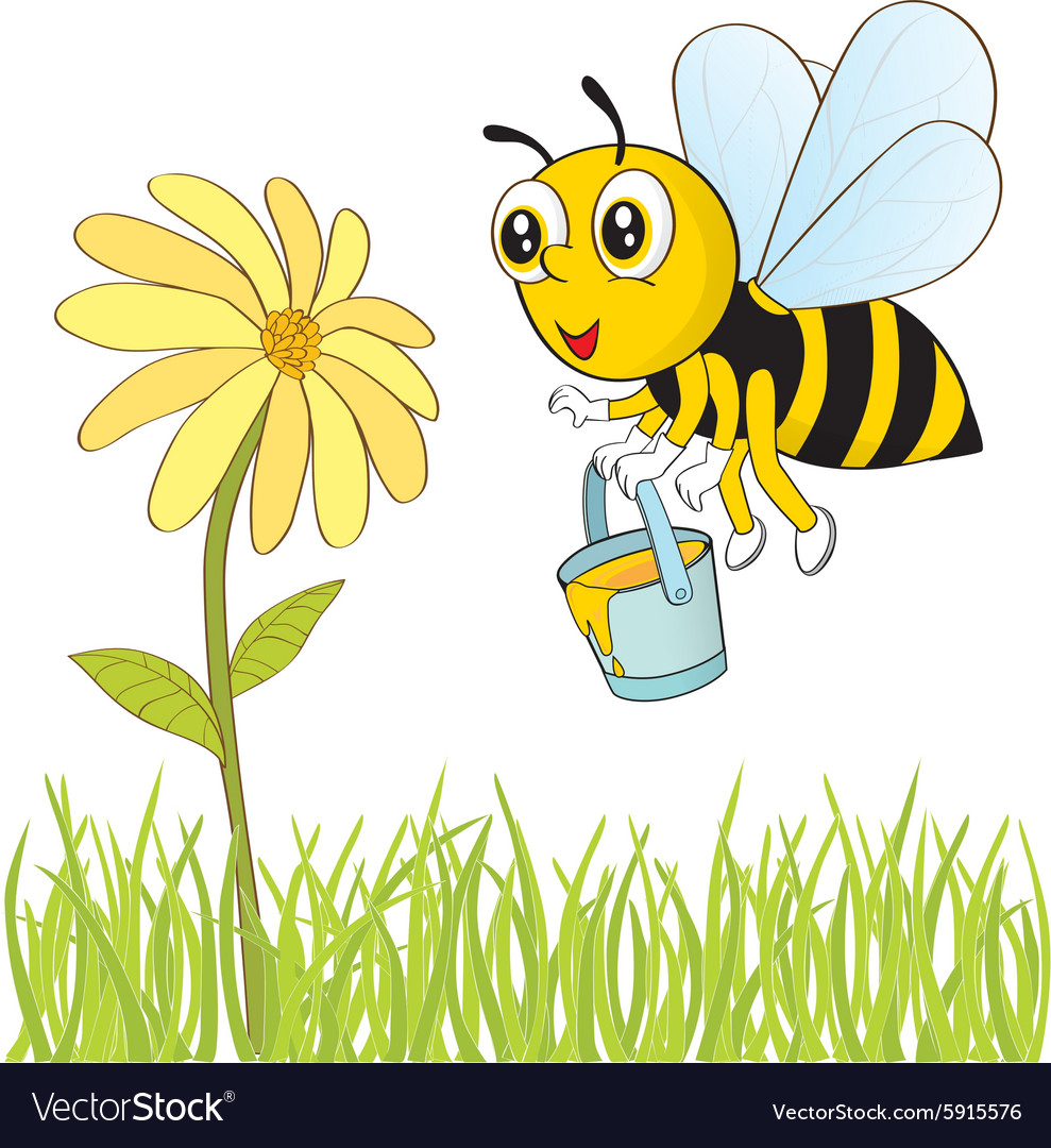 Bee And Flower Royalty Free Vector Image Vectorstock